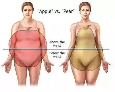 中藥減肥,中醫,內臟脂肪,台北減肥推薦,埋線,新北減肥埋線推薦,減肥,減重,產後瘦身,瘦身,益曼中醫,穴位埋線,肥胖,膽固醇,雕塑,體脂肪