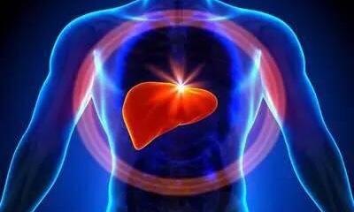 百病從肝治|肝與疾病的關係 (下篇)